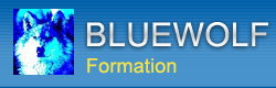 Bluewell - Bluewolf Formation